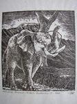 Bummel Elefant