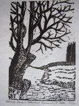 Baum am Ackerrand